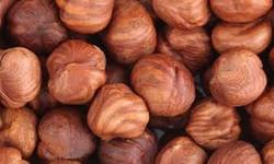 Shelled Filberts