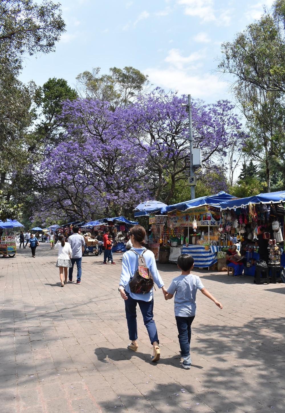 Mexico City vendors in Polanco