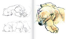 Painting the Ice Bear sample (8).jpg