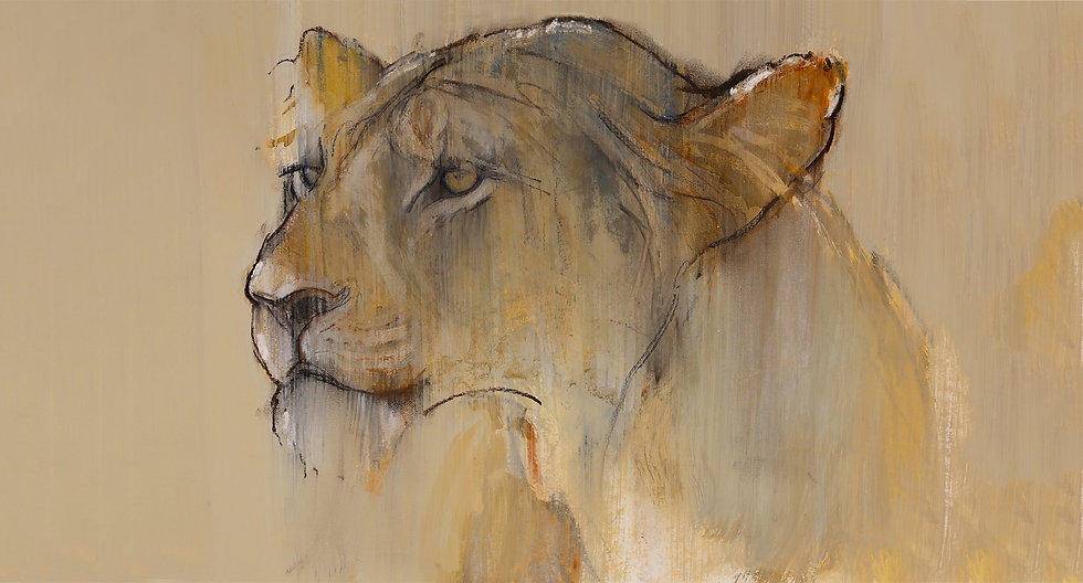 Mark Adlington - Chyulu Lioness