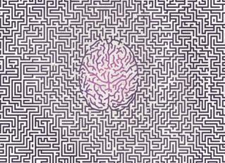 Neuroartes y Biopolítica