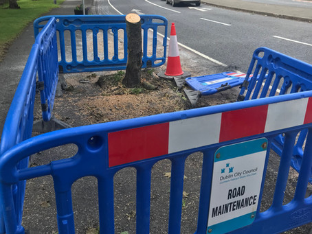 Large scale Navan Road Tree Removal Planned for BusConnects