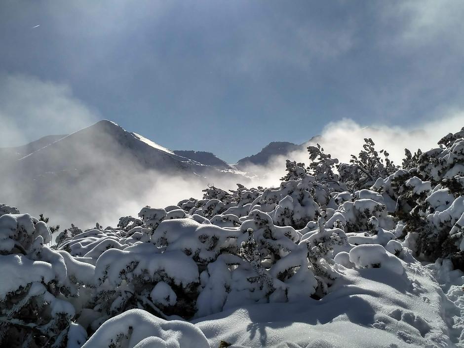 връх Сиврия
