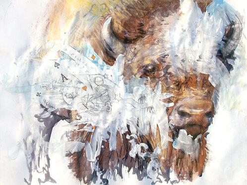 Self Portrait as as Buffalo