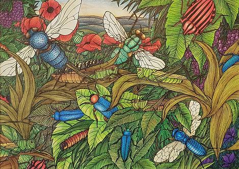 'The Cricket Fields' By Anne Clancy
