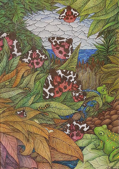 'Toads Banquet' By Anne Clancy