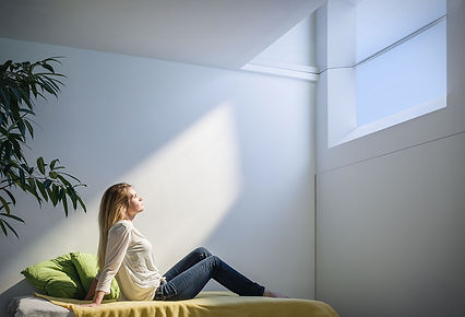 coelux-artificial-skylight.jpg