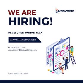 Developer Junior Java