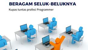 KARIER PROGRAMMER & BERAGAM SELUK-BELUKNYA