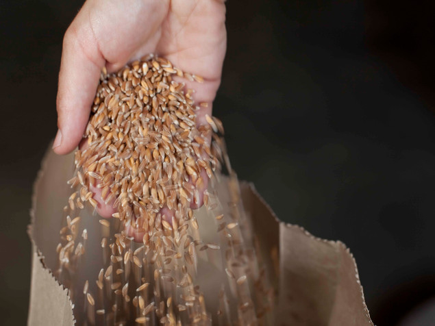 Grain Farmers Join Forces With Vacation Homeowners, Both Flourish