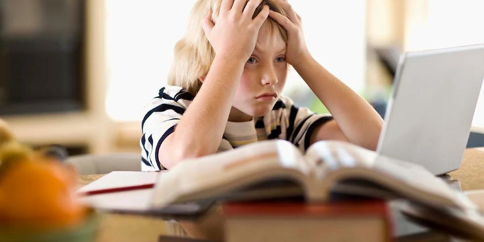 Разговор о семейном образовании: если вас запугивают