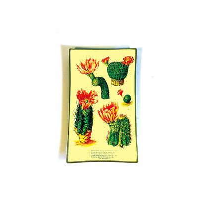 California Cacti Glass Tray