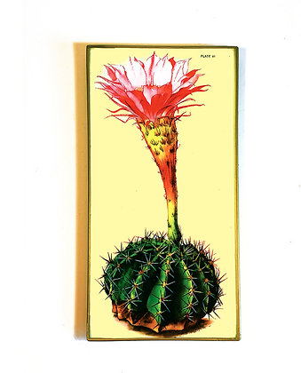 Flowering Cactus glass tray