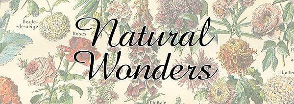 Botanticals web banner.jpg