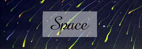 Space Banner web.jpg