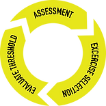 Metrics Fitness Lab Assessments