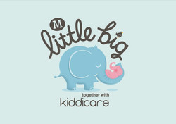 Little-Big-Log_482