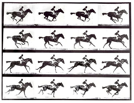 horse-and-ridejpg.jpg