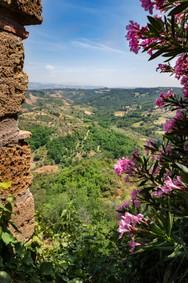 Typical Umbria