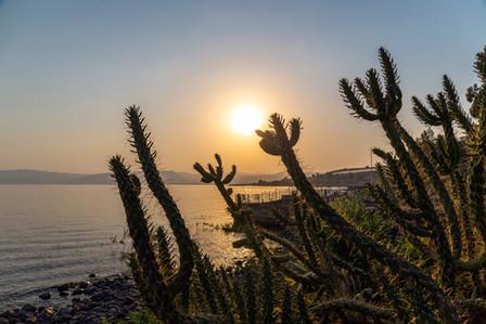 See of Galilee