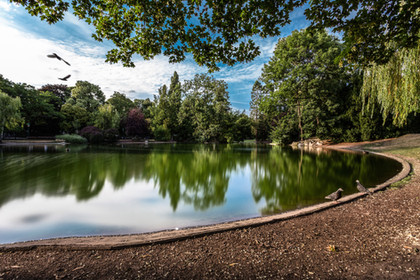Vienna State Park