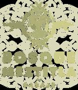 Bosque Meztitla