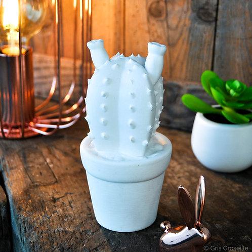 Décoration Cactus blanc - Gris Groseille boutique déco tendance Urban Jungle Angers 49