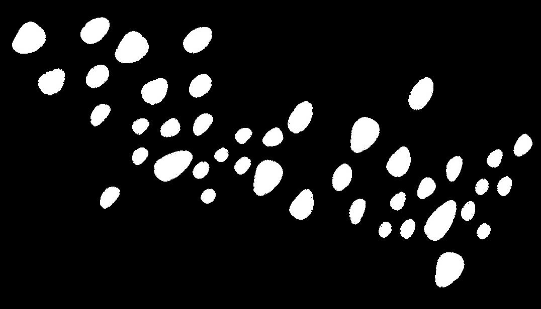 RedRockComfort_Pattern-07.png