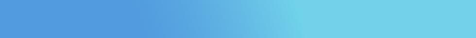 Silverfox Landing Page Design-05.png
