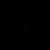 Logo Wildlife Explorer b.png