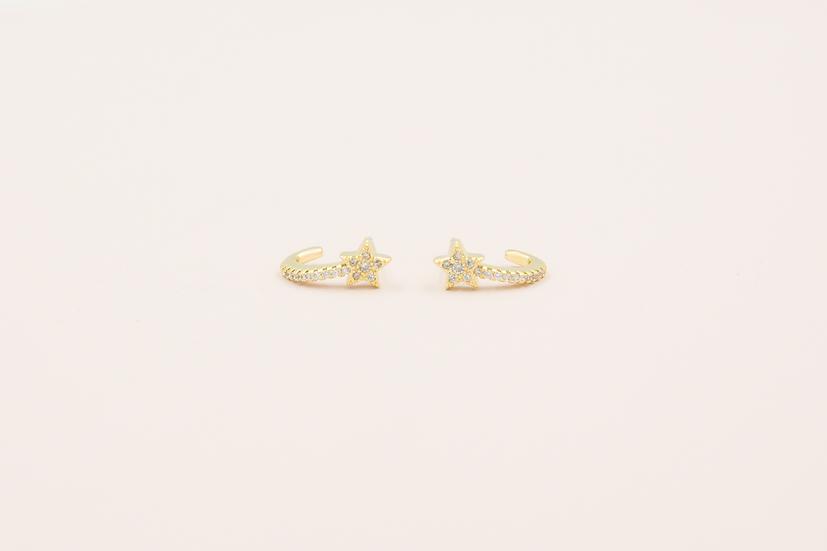 Avice Star Earrings in Gold