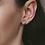 Thumbnail: Desi Earrings in Silver
