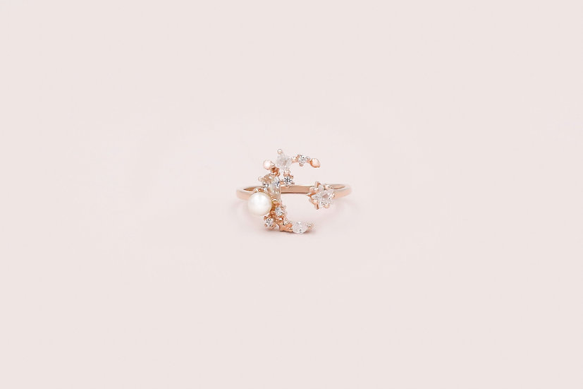 Aerin Cresent Moon & Star Ring in Rose Gold