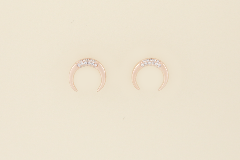 Desi Earrings in Rose Gold