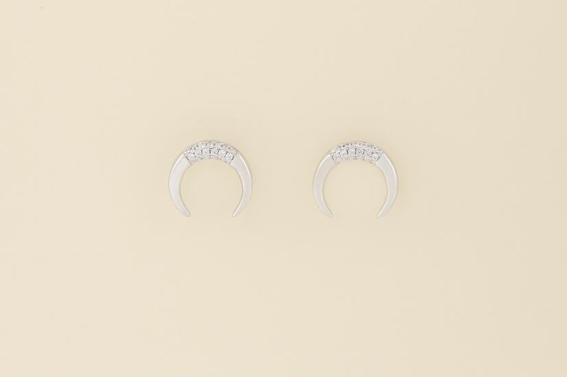 Desi Earrings in Silver