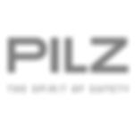 pilz1.png