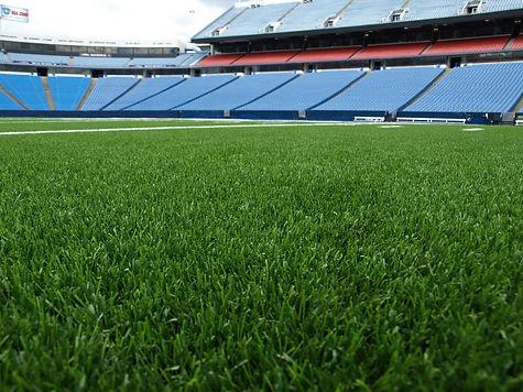 Bills-stadium-web29-15740.jpg