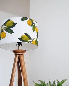 lemon grove depiction.jpg