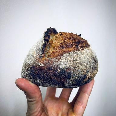 Buckwheat sourdough batard.JPG
