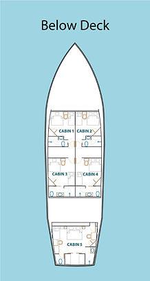 D2_Below-Deck.jpg