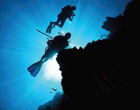 forgotten-islands_wall-diving_01jpg
