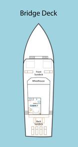 D2_Bridge-Deck.jpg