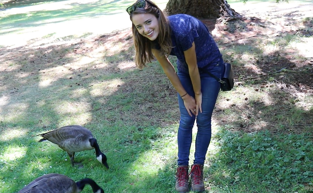 With Geese in Stanley Park