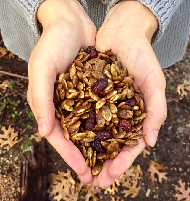 Spiced Pumpkin Seeds with Dried Cranberries