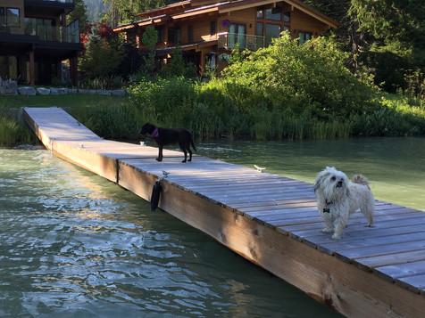 Whistler = Dog Lovers