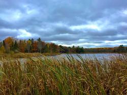 Daggett's Bay Fall Colors