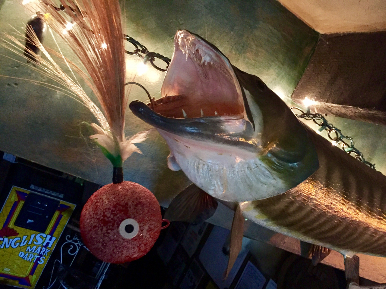 Record Musky in the Bar