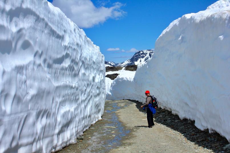 Hiking in the Alpine