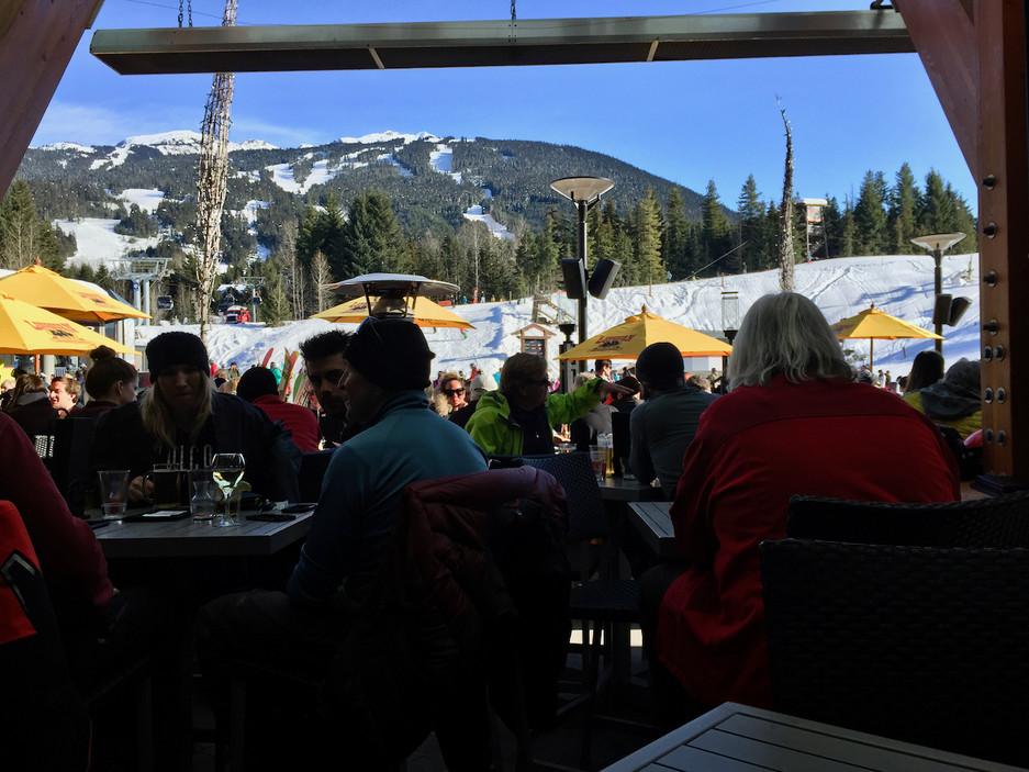Longhorn Love