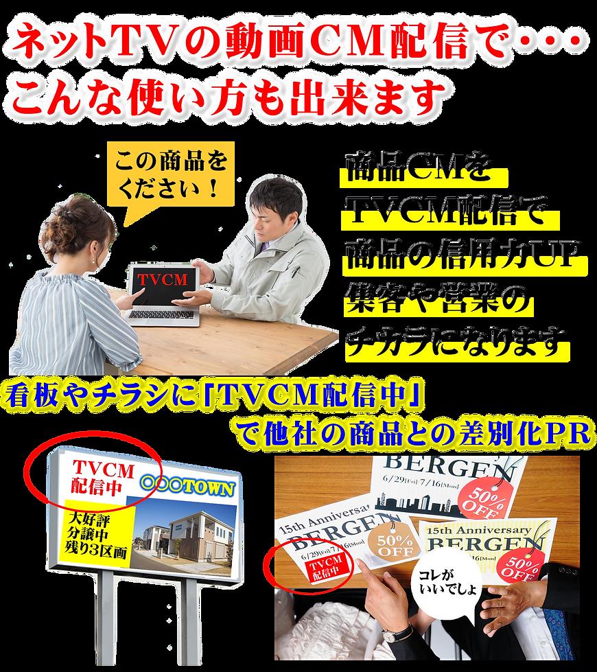 動画CM配信使い方例.PNG
